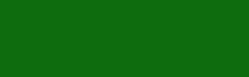 Ambiforest Consultoría Ambiental Logo